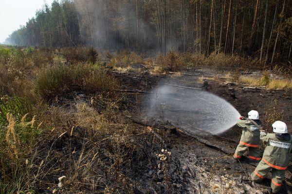 Russian wildfires - Sputnik International