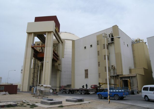 The second unit of the Bushehr nuclear power plant (NPP) is expected to become operational within the next eight years, Head of Atomic Energy Organization of Iran (AEOI) Ali Akbar Salehi said Monday.