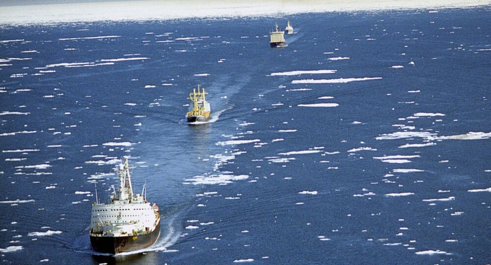 The Northern Sea Route: An Arctic lifeline