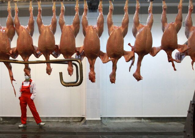 Russian agriculture watchdog permits chicken imports from 18 of 33 US companies