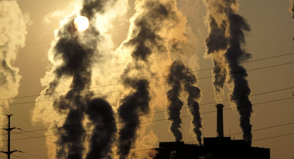 Russia has expressed keen interest in reaching a comprehensive agreement aimed at reducing the amount of greenhouse gas emissions during the UN climate change conference.