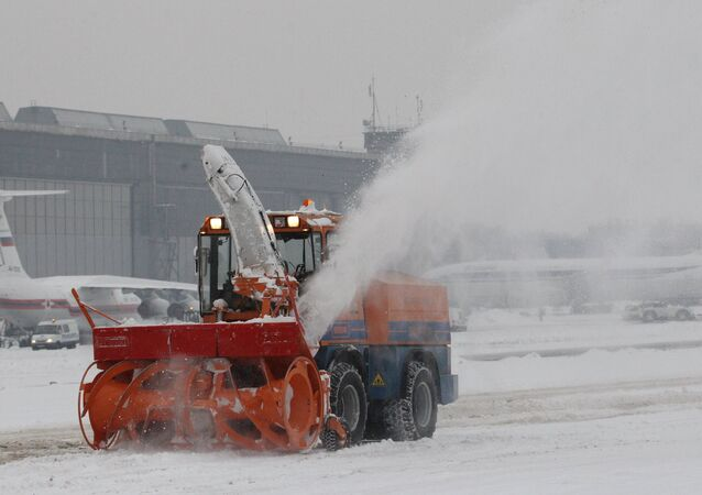 Domodedovo International Airport canceled 10 flights scheduled for Wednesday.