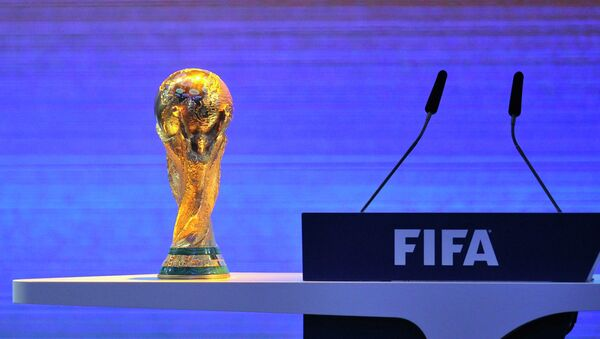 Qatar will not be hosting the 2022 FIFA World Cup due to extremely high temperatures, Theo Zwanziger - Sputnik International