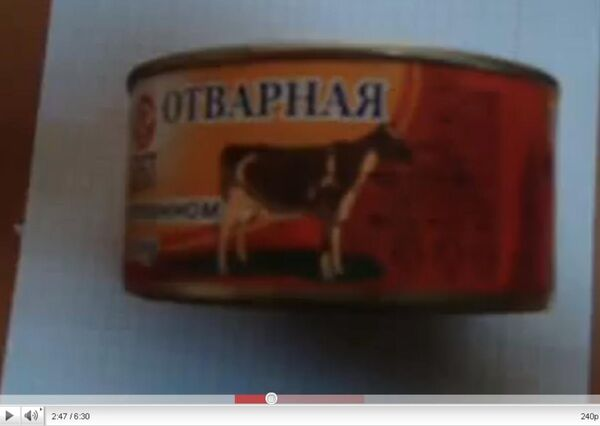 Russian troops fed dog food 'to cover up for theft' - prosecutor - Sputnik International