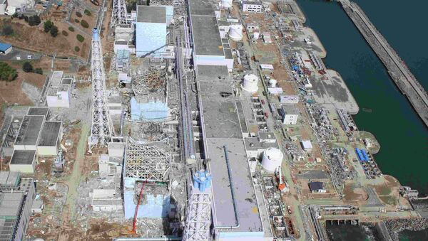 The Fukushima nuclear disaster in the Sea of Japan has not affected the surrounding atmosphere. - Sputnik International