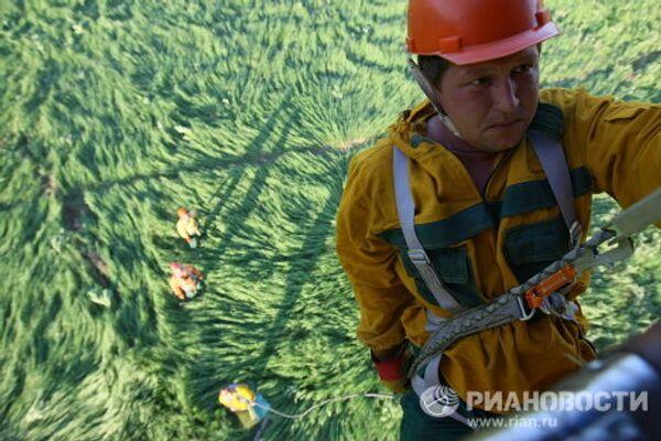 Putting out forest fires in the Krasnoyarsk Territory  - Sputnik International