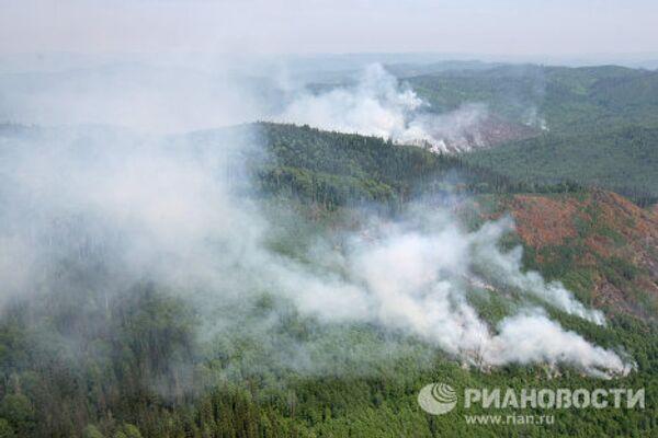 Лесные пожары в Красноярском крае - Sputnik International