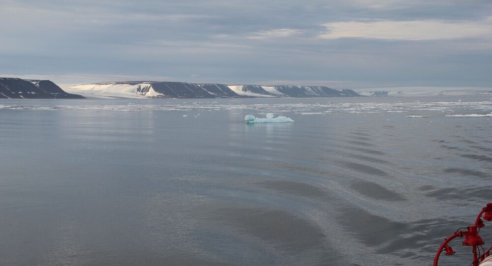 Japan and Finland are ready for Arctic cooperation, including the use of the Northern Sea Route.