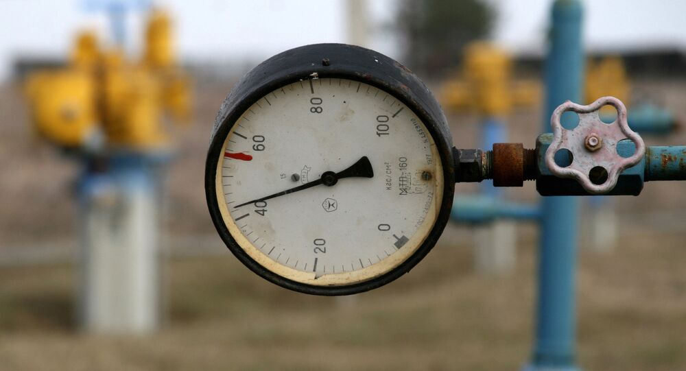 Ukraine cites $230 as 'fair' price for Russian gas