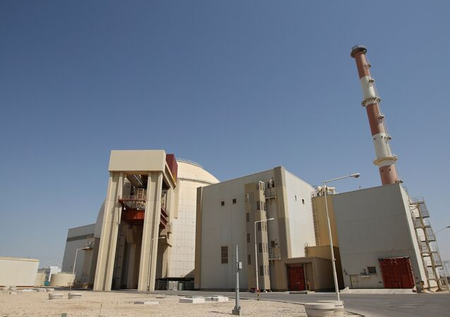 The Bushehr nuclear power plant in Iran.