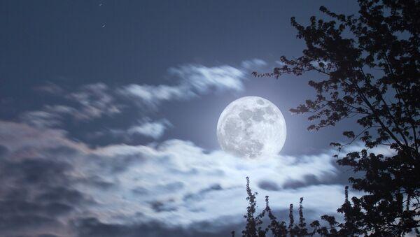 Full moon - Sputnik International