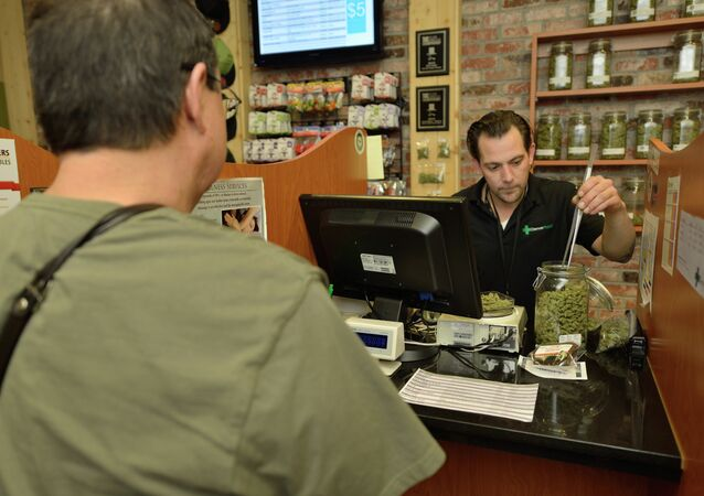 An employee at the Denver Relief dispensary fills a medical marijuana order for a client with a state-approved doctor's recommendation for the drug. Many believe Colorado lawmakers will give medical marijuana shops will get first crack at selling recreational cannabis, though Denver Relief plans to stick to the therapeutic side of the business.