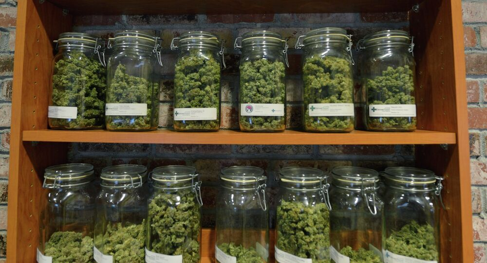 Behind the counter at the medical marijuana dispensary Denver Relief.