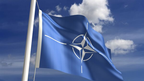 NATO Members Vow Extensive Support, Broader Cooperation With Ukraine - Sputnik International