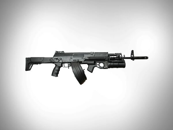 The Kalashnikov Concern, one of the world's largest firearms producers, makes the famed AK-47 assault rifle and its military derivatives (photo: AK-12). - Sputnik International