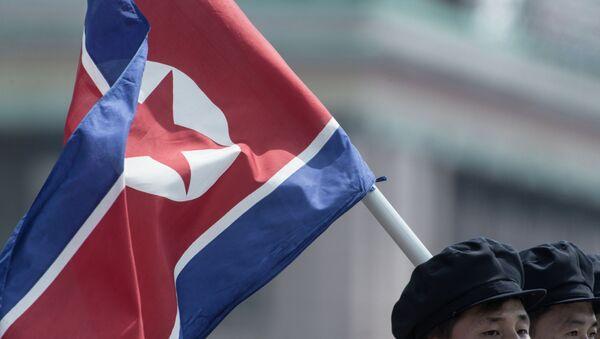 South Koreans can be arrested for carrying North Korean flags - Sputnik International