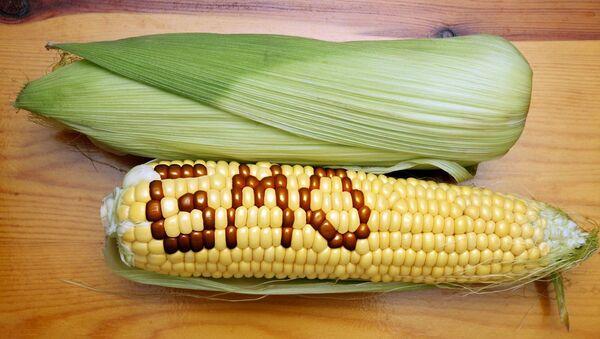 Genetically Modified Foods - Sputnik International