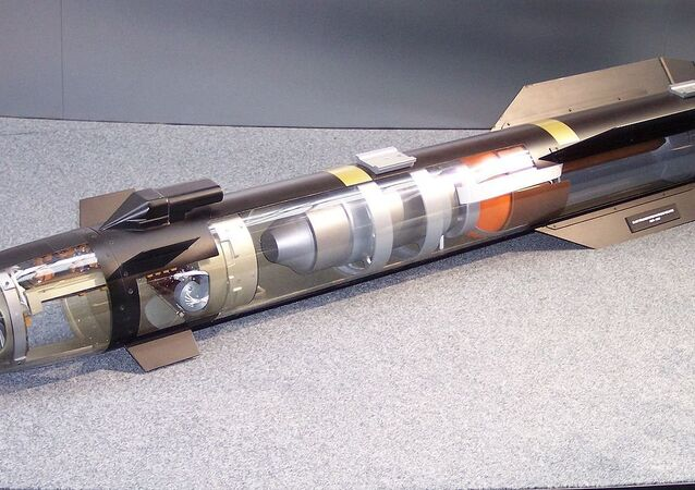 A model of the AGM-114 Hellfire's components