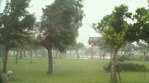The number of people who suffer from Typhoon Halong in Japan is increasing - Sputnik International