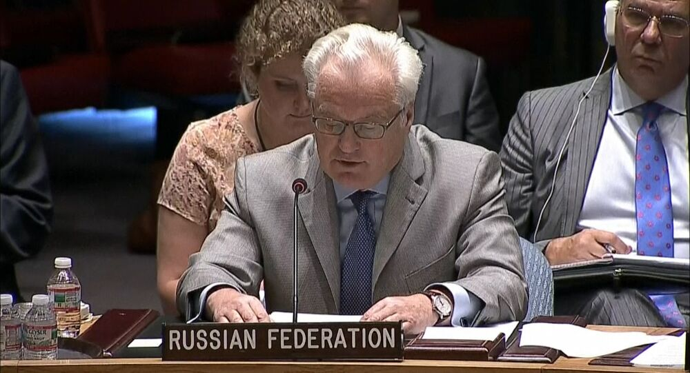 Kiev Continues Military Operation at the Expense of Thousands of Lives – Churkin in UN Security Council