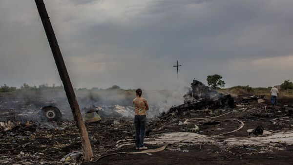 Parts of wreckage are seen at the site where the downed Malaysian Boeing 777 flight MH17 crashed - Sputnik International