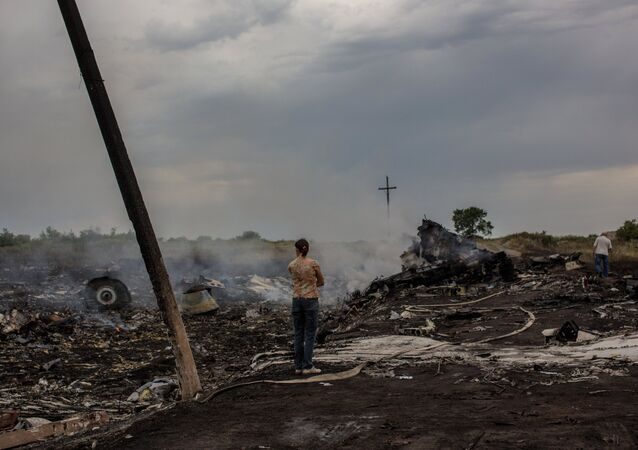 The crash site of the Malaysian Boeing 777 outside Shakhtyorsk, Donetsk Region