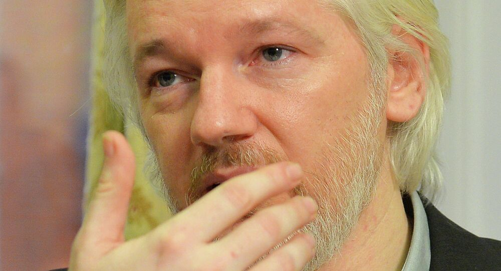 WikiLeaks founder Julian Assange gestures during a news conference at the Ecuadorian embassy in central London August 18, 2014.