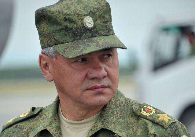 Russia's Defense Minister Sergei Shoigu