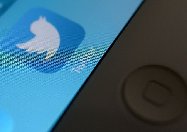 The social network Twitter has consistently violated Russian laws, including anti-extremism legislation, the head of Russia's federal communications agency Roskomnadzor said Tuesday.