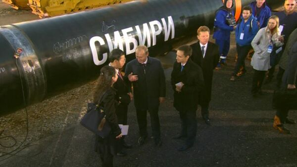 President Putin at tue ceremony marking the joining of the first link in the Power of Siberia main gas pipeline on September 1, 2014. - Sputnik International